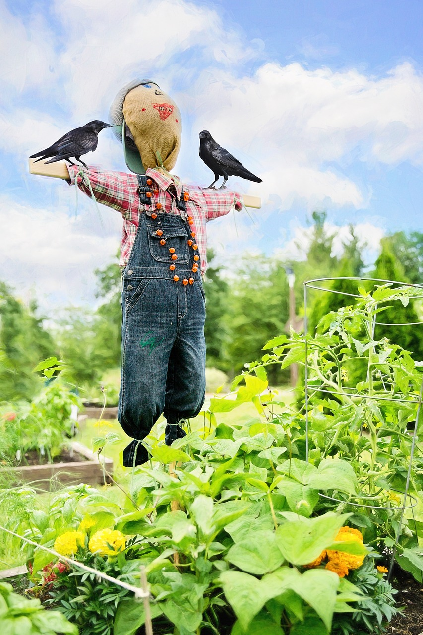 keep birds out of your garden